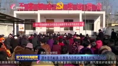 泗水县高峪镇:支部领办合作社  激活乡村振兴新动能