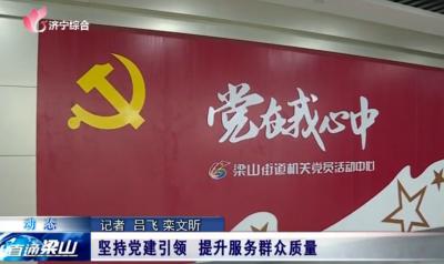 梁山县坚持党建引领  提升服务群众质量