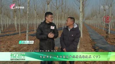 专家课堂:羊肚菌高产优质栽培技术(下)