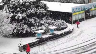 一大波绝美雪照来袭!山东迎牛年最大规模雨雪,或破2月记录