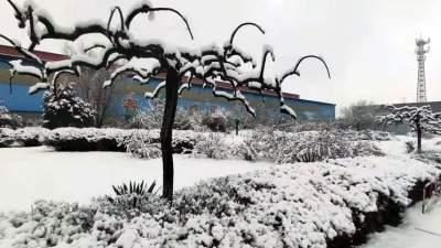 最大降水点在这里,今天山东多地阴有小雨雪