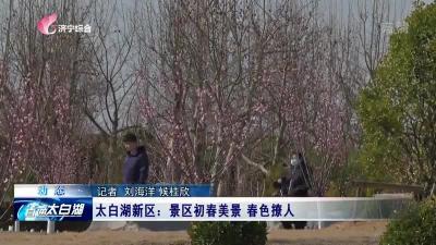 太白湖新区:景区初春美景 春色撩人