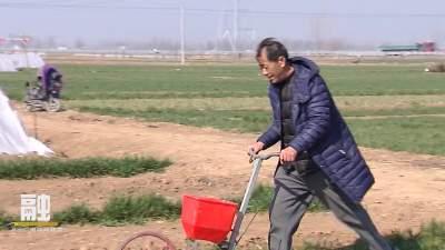 金乡农业技术人员深入田间地头指导春耕生产