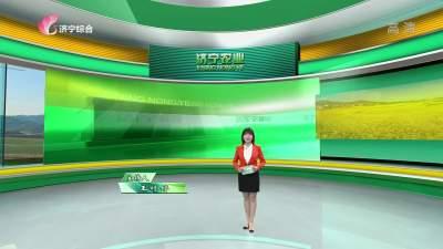 济宁农业-20210226