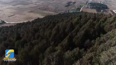 微山鲁山林场森林消防员:春节坚持巡山 守护一方平安