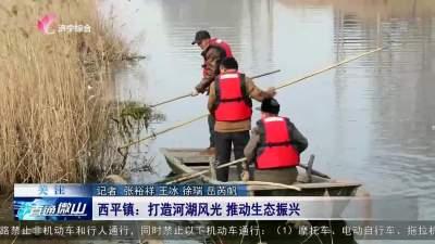 微山县西平镇:打造河湖风光 推动生态振兴