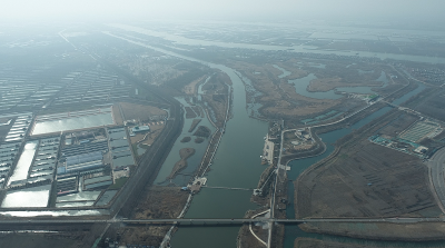 """【新春走基层】春节不回家,他们用""""执著""""守护湿地"""