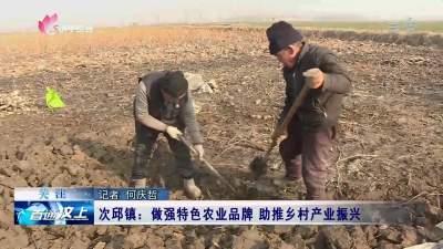次邱镇:做强特色农业品牌 助推乡村产业振兴