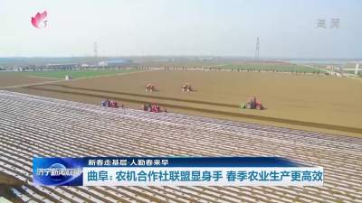 新春走基层 | 农机合作社联盟显身手 春季农业生产更高效