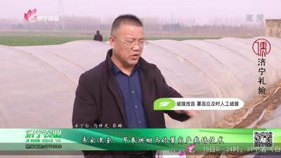 專家課堂:早春拱棚馬鈴薯高產栽培技術