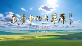 第六十七期济宁优秀原创歌曲展播《我梦中的大草原》