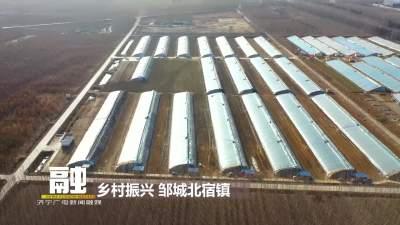邹城北宿镇:设施农业助增收