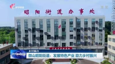 微山昭阳街道:发展特色产业  助力乡村振兴