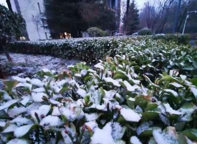 小雪!中雪!雨夹雪!山东发布道路结冰黄色预警信号!