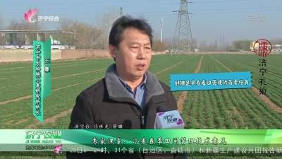 专家课堂:小麦春季田间管理技术意见
