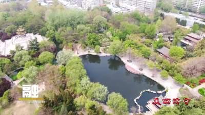 美麗濟寧 | 兗州少陵公園牡丹美不勝收