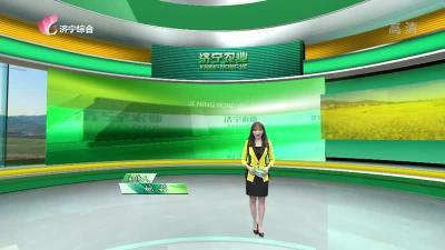 济宁农业-20210402