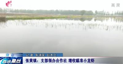 鱼台县张黄镇:支部领办合作社 增收瞄准小龙虾