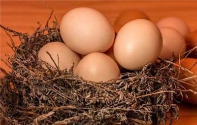 意念把熟雞蛋返生孵小雞?校長荒唐論文還孵化了哪些荒誕?