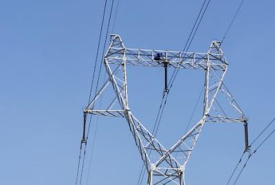 國網濟寧供電公司開展專項行動防鳥害護電網