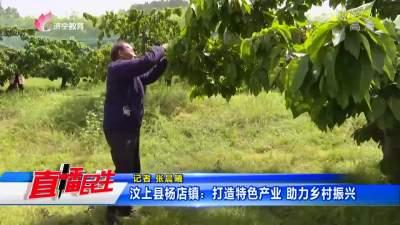 汶上县杨店镇:打造特色产业  助力乡村振兴