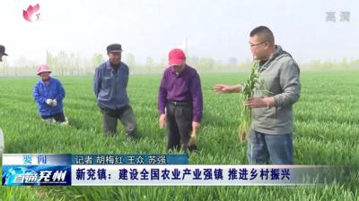 兖州新兖镇以小麦为主导产业 上榜全国农业产业强镇