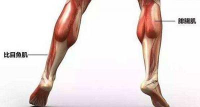 为了瘦腿,有人主动切断腿部神经?离谱的事不止这一件