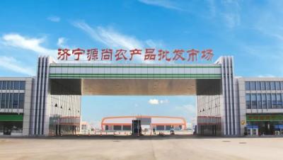 济宁这处现代化农副产品批发市场投入运营,地址在……