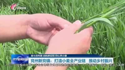 同心奔小康 | 济宁兖州区:打造小麦全产业链 推动乡村振兴