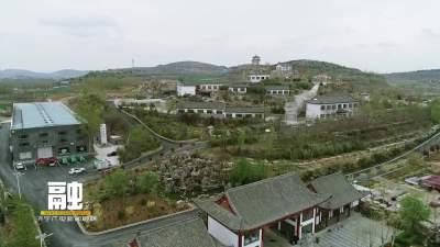 张新安:担当作为谋发展 因地制宜抓产业