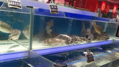 鱼肉价格上涨 网友:一条鱼三四十,我还是吃猪肉吧