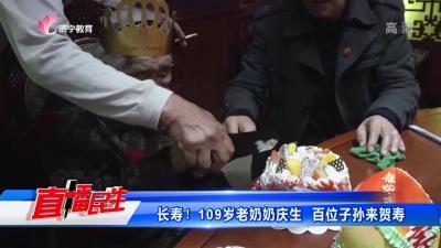 长寿!109岁老奶奶庆生  百位子孙来贺寿