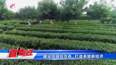 建设田园综合体 打造茶旅新经济