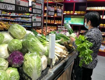 濟寧蔬菜供應充足價格平穩 未來菜價仍有下降空間