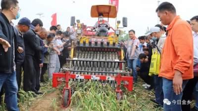 30多台机械集中演示 大蒜生产机械化现场会开在田间地头