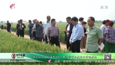 市農科院組織召開2021年濟寧市小麥新品種觀摩會