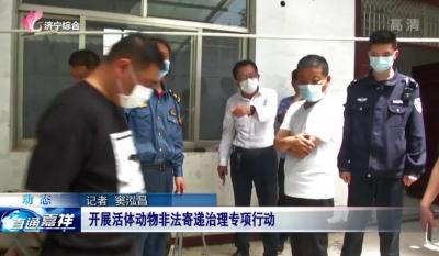 嘉祥县开展活体动物非法寄递治理专项行动