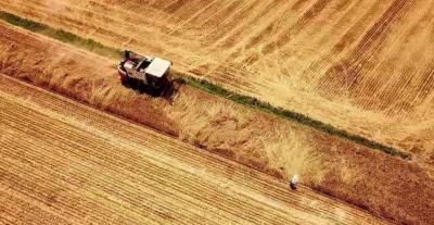 嘉祥68.2万亩小麦收获完毕