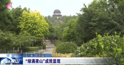 """梁山县完成造林3741.56亩 """"绿满梁山""""成效显现"""