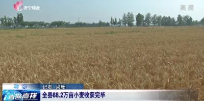 颗粒归仓!嘉祥县68.2万亩小麦全部收获完毕