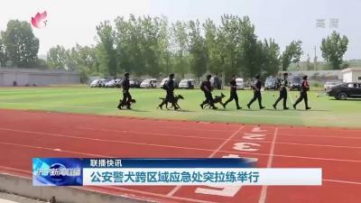 猛犬来袭!济宁公安警犬跨区域应急处突拉练举行