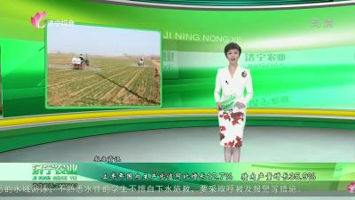濟寧農業-20210722