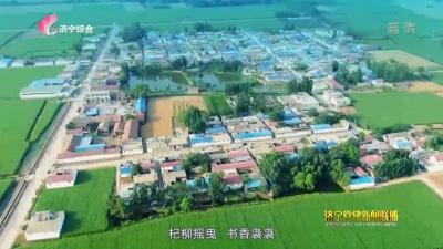 """?我和我的支部丨任城区唐口街道张寨村""""转型""""之路"""