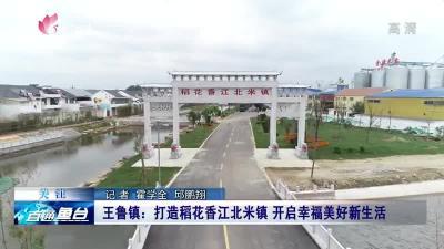 鱼台王鲁镇:打造稻花香江北米镇 开启幸福美好新生活