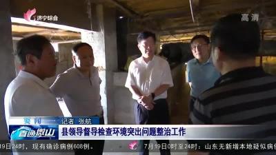 微山县领导督导检查环境突出问题整治工作
