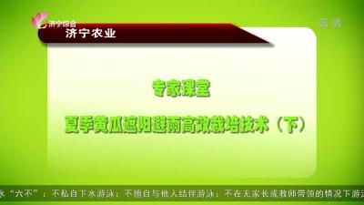 專家課堂:夏季黃瓜遮陽避雨高效栽培技術(下)