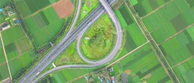 金鄉:當交通遇上生態 一路皆是景