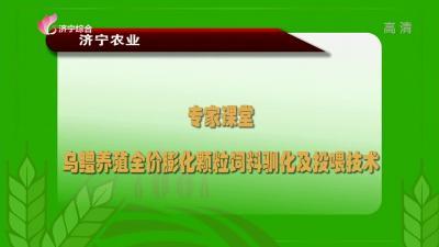 专家课堂:乌鳢养殖全价膨化颗粒饲料驯化及投喂技术