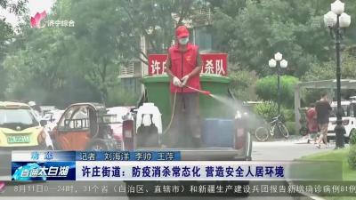 太白湖許莊街道:防疫消殺常態化 營造安全人居環境