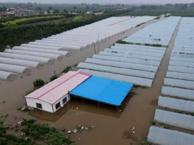 洪灾后猪肉、蔬菜、粮食会涨价吗?回应来了